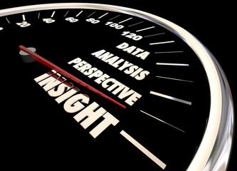 Insight Analysis Information Data Perspective Speedometer 3d Ill