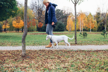 Girl and her dog walking in the park