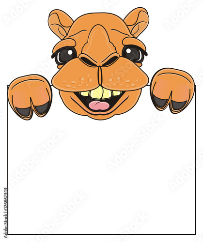 Cartoon Camel Face