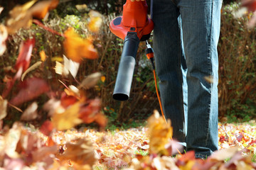 Man working with  leaf blower: the leaves are being swirled up a
