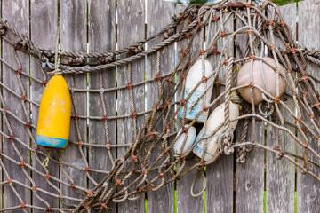 Buoys on the Fence 1