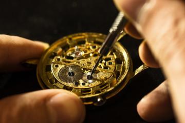 Mechanical watch repair Wall mural