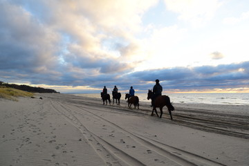 People on horses near the sea