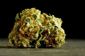 Marijuana bud close up