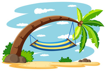 Hammock on the coconut tree