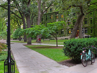 shady college campus with ivy covered building and student cyclist