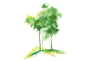 Watercolor green tree isolated on white background. Vintage drawing.