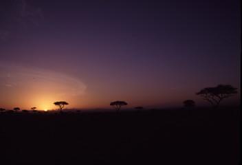 ケニアの空 サバンナ 夕日 日の出 日の入り 夕暮れ 夜明け アフリカ 地平線