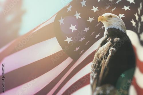 American Bald Eagle Flag Patriotism Bald Eagle Symbol Of American
