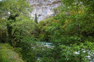 Abkhazia Nature