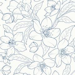 Blooming hellebore flowers seamless pattern. Christmas rose. Lenten rose. Winter rose. Helleborus niger. Detailed sketch drawing. Dark blue on white background.