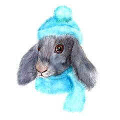 little rabbit with knitted cap and scarf