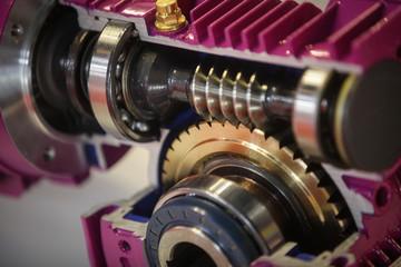 Gears close up