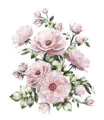 vintage watercolor flowers. floral illustration, flower in Pastel colors, pink rose. branch of flowers isolated on white background. Leaf and buds. Cute composition for wedding or greeting card