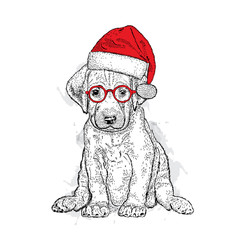Cute puppy in a Christmas hat and sunglasses. Vector illustration.