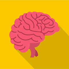 Brain icon. Flat illustration of brain vector icon for web