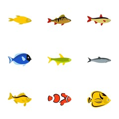 Marine fish icons set. Flat illustration of 9 marine fish vector icons for web