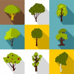 Trees icons set. Flat illustration of 9 trees vector icons for web