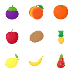 Farm fruit icons set. Cartoon illustration of 9 farm fruit vector icons for web