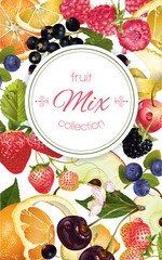 Vector fruit and berry banner. Design for juice, tea, ice cream, jam, natural cosmetics, sweets and pastries filled with fruit, dessert menu, health care products. With place for text