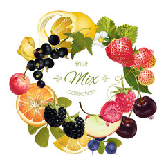 Vector fruit and berry wreath. Design for juice, tea, ice cream, jam, natural cosmetics, sweets and pastries filled with fruit, dessert menu, health care products. With place for text