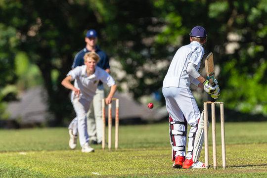 Cricket Batsman Bowler Game Action