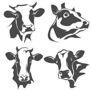 cow head portrait, set of stylized vector symbols