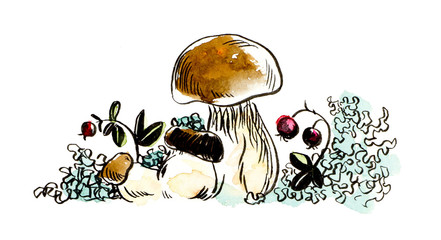 Autumn Sketches. Forest miniatures. Mushrooms. Watercolor hand drawn illustration.