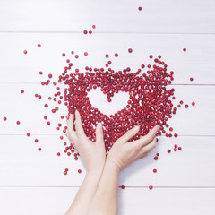 Cranberries on white background. Heart frame and female hands