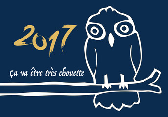 2017 - Optimisme - Humoristique - Chouette