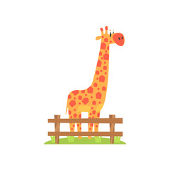 Tall Orange Giraffe With Hexahedron Shaped Spots Standing On Green Grass Patch In Open Air Zoo Enclosure