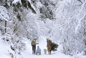 Family walking in snow, rear view