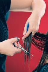 Cutting hair. Cutting hair in hair salon
