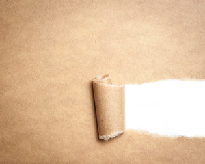 Blank torn brown paper with space for text on white background,c