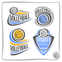 Vector abstract logo Volleyball Ball