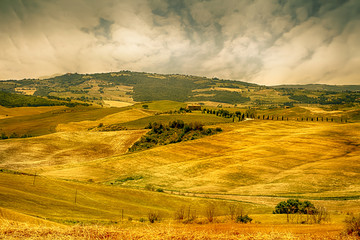 Foto auf Gartenposter Reisfelder Landscape in Tuscany at sunset in summer