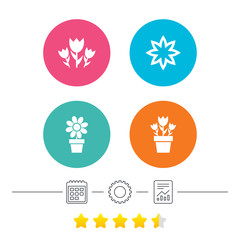 Flowers icons. Bouquet of roses symbol. Flower with petals and leaves in a pot. Calendar, cogwheel and report linear icons. Star vote ranking. Vector