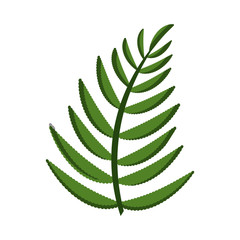 leaf palm nature isolated icon vector illustration design