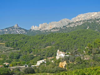 Grape vines and small town, with forest and hills of the Dentelles de Montmirail......
