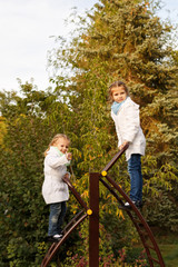 Sisters swarms up ladder on playground.