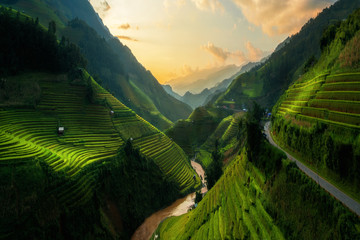 Garden Poster Rice fields Terraced rice field in Mu Cang Chai, Vietnam