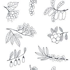Berries sketch seamless pattern. illustration
