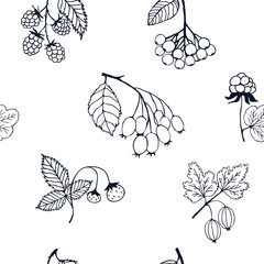 Berries sketch seamless pattern. illustration
