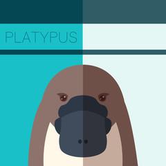 Platypus Flat Postcard