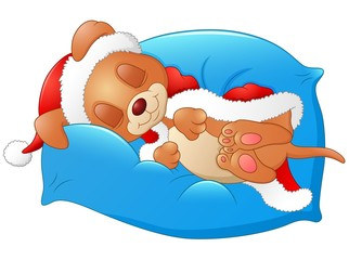 Christmas puppy sleeping on the pillow