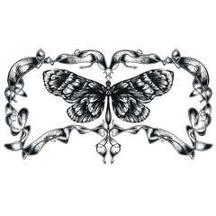 Detailed hand drawn butterfly silhouette isolated on white background