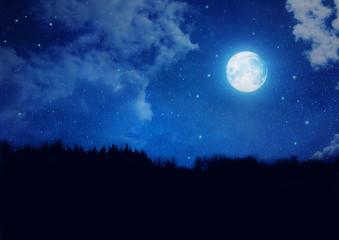 Sternenhimmel mit Vollmond und Waldsilhouette - Backround