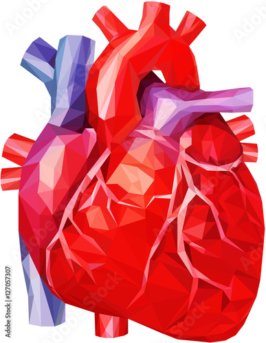"""""""Human Heart In Low Poly"""" Stock Photo And Royalty-free"""