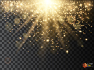 Abstract Light Overlay Effect on Transparent Background. Vector Illustration. Bokeh and Sparkles. Golden Sun Rays