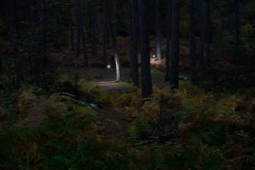 Wandering Spirits (Part 2) #08